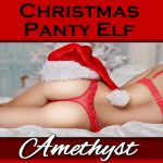 The Christmas Panty Elf is horny for pantyboys